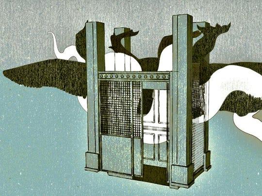 "Craig Mains' exhibit ""Snake | Alligator | Elevator"""