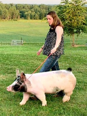Rachel Leary is shown with her Grand Champion Gilt during the virtual Swine Show for the 2020 Henderson County Fair.
