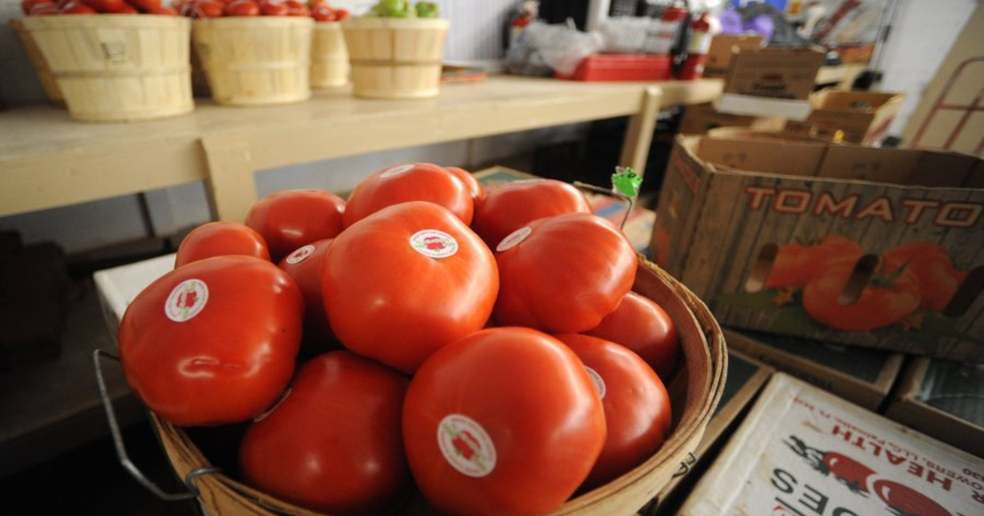 The 'mater matters: Grainger County tomato growers are protective of