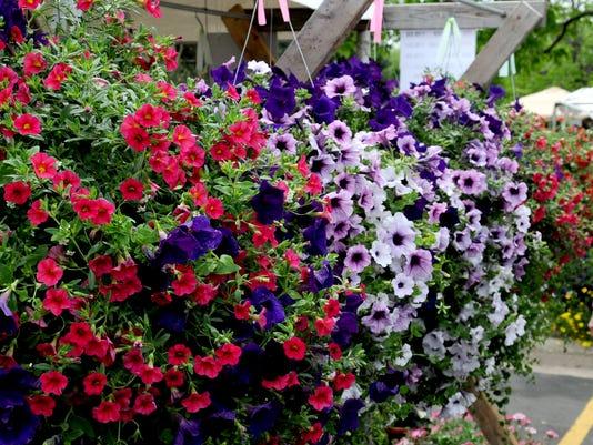 -GPGBrd_05-26-2014_Gazette_1_D001~~2014~05~25~IMG_-Botanical_Garden_Fa_1_1_F.jpg