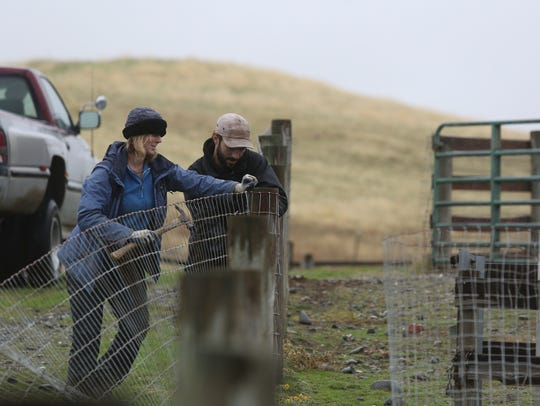 Farm Sanctuary's Northern California Shelter facilities supervisor Elise McClelland, from left, and project assistant Dean Adickes repair a fence Monday at the 300-acre sanctuary in Orland.