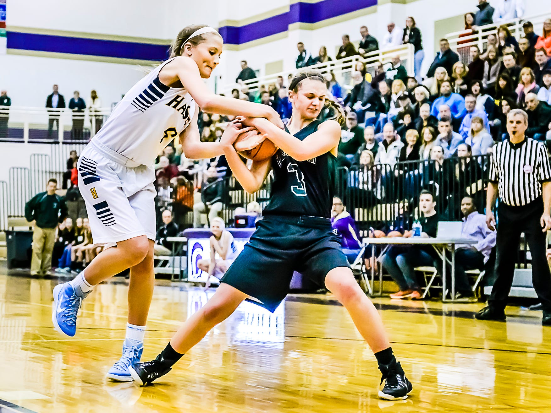 Haslett's Karson Tripp, left, and Williamston's Renee Sturm are among the area girls basketball players to watch.