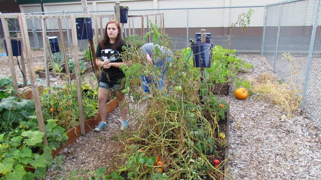 Nakeya Anderson, left, and her mom, Michele Anderson, tend to the Stayton Intermediate/Middle School garden. These past two years Nakeya, an incoming freshman at Stayton High School, attended the school's gardening class that planted and cultivated the garden.
