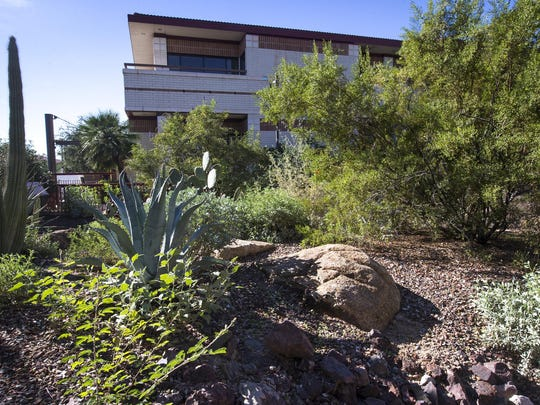 Peoria City Hall's Desert Fusion Garden features a blend of several different desert-adapted landscapes, created to demonstrate designs that are attractive and environmentally responsible.