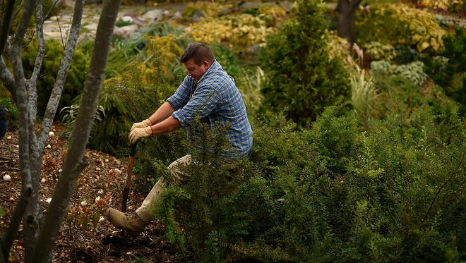 Scott Schroeder, who works in the public safety department at UW-Green Bay, helps plant thousands of spring bulbs at the Green Bay Botanical Garden on Friday,