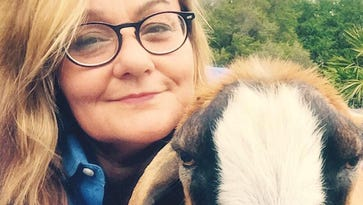 An unexpected career in journalism has allowed me to indulge my ridiculous passion for rescued livestock, like one-eared Barren the goat
