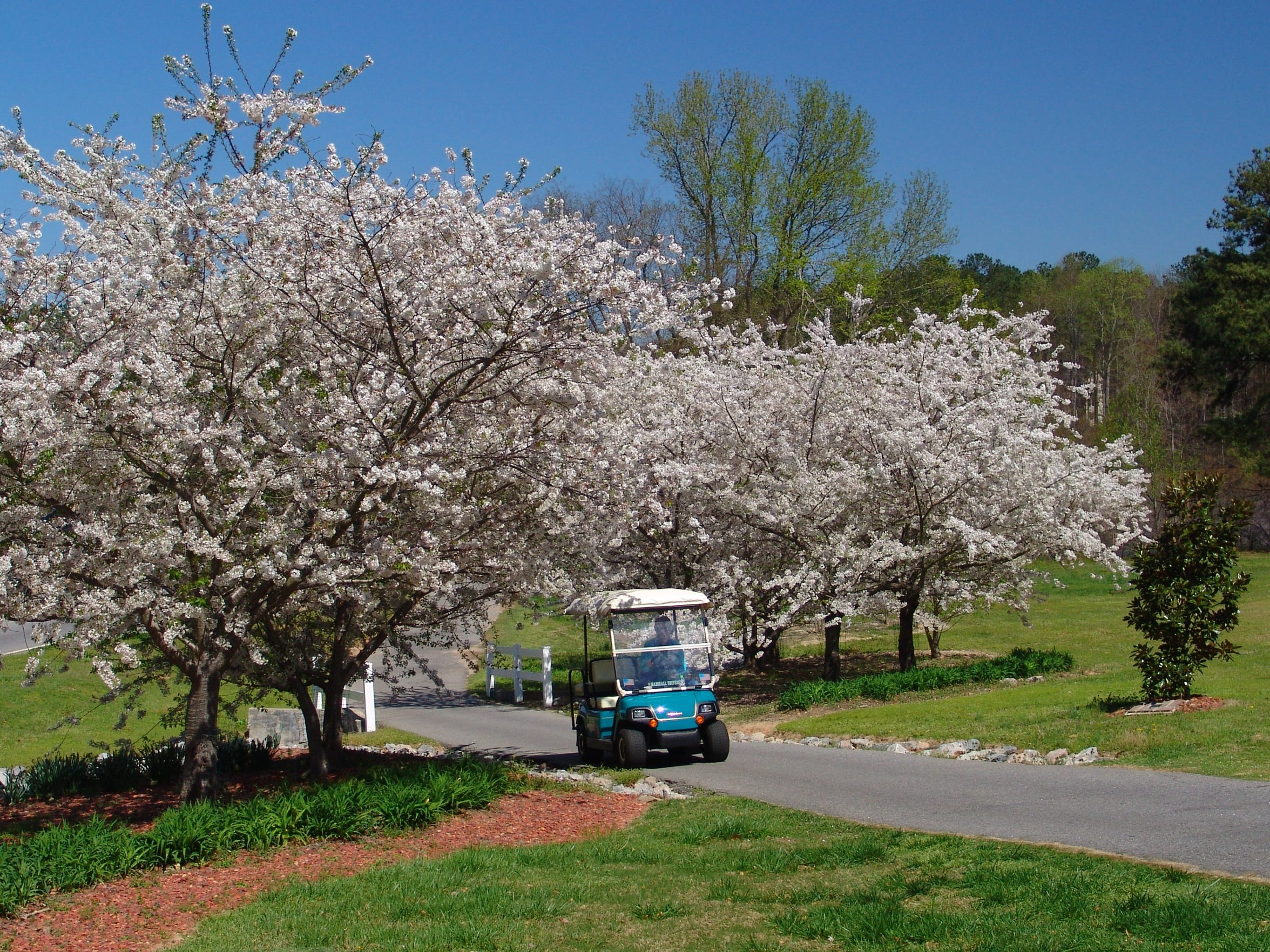 The network of roughly 100 miles of multi-use trails that runs through Peachtree City, Georgia, is made for walking, cycling and golf carts.