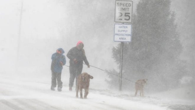 Angela Junker, 14, and her brother, Joey, 9, walk their dogs Murphy and Daisy in whiteout conditions in Van Meter on Thursday, Jan. 16, 2014.