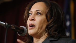 """Kamala Harris told reporters in Iowa on Sunday that """"we have to all acknowledge that people have not started out on the same base and have not had equal opportunities to success."""""""