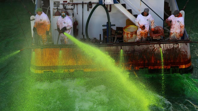 Crews on boats begin dumping green dye into the Chicago River on Saturday, ahead of St. Patrick's Day, after Mayor Lori Lightfoot reversed an earlier decision not to tint the waterway for a second year because of the coronavirus pandemic.