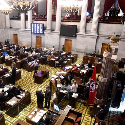 Tennessee state lawmakers sending mixed signals on refugees, immigrants
