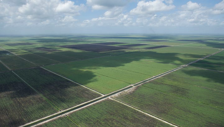 Bill Nelson, Marco Rubio ask Senate leaders to bring Lake Okeechobee reservoir up for a vote
