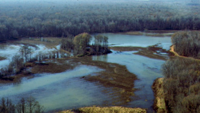 An auto plant on the megasite would discharge as much as 3 million gallons of wastewater daily into the Hatchie River.