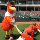 Shorebirds name 2016 front office hires