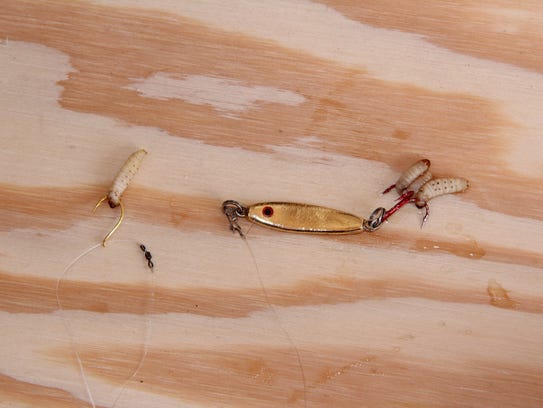 A popular rig used by anglers to catch lake whitefish