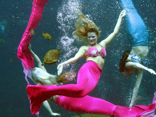 In addition to to swimming and tours, the Weeki Wachee Springs State Park offer live mermaid shows.