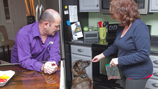 Al Groff watches his wife Penny feed snacks to Pearl, while Gracie and Tugger also vie for a handout in their Conway Township home. Al Groff has been named Veteran of the Year for his work with the Disabled American Veterans as well as other work.