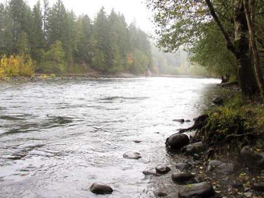 Clackamas River as it rolls past Milo McIver State Park