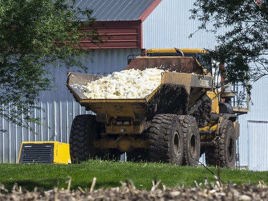 Dead chickens are hauled to be buried in a farm field