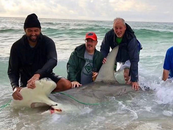 Big John's Shark Fishing Adventures with a 12-foot