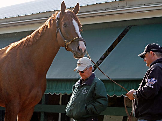 Trainer Art Sherman, center, and his son and assistant Alan, far right, check out Kentucky Derby and Preakness Stakes winner California Chrome at Pimlico Race Course in Baltimore, Sunday, May 18, 2014. Trainer Art Sherman says California Chrome might not pursue a Triple Crown bid in the Belmont Stakes if New York officials won't allow the colt to wear a nasal strip. (AP Photo/Garry Jones)