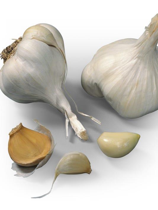chefchat01-garlic
