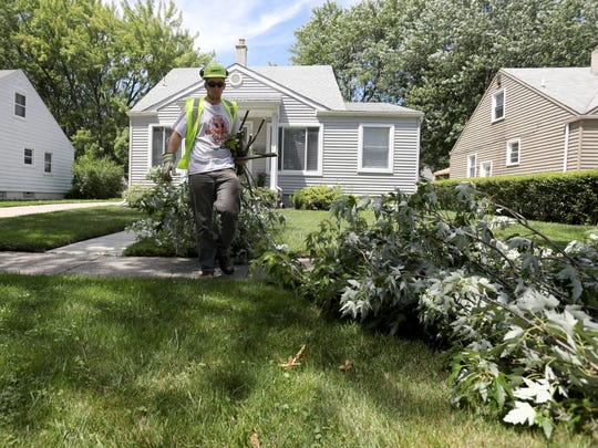 James Kohl, 18, an apprentice with Davey Tree, takes away branches after they were cut down at a home in Berkley on Tuesday, June 26, 2018.