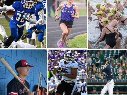 06da16002c Battle Creek Enquirer's top local sports stories from 2017