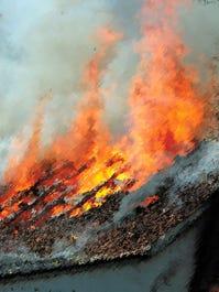 webart fire