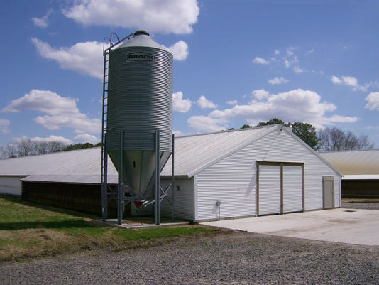 Sussex County Chicken House