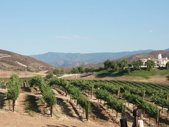 Vineyards at Leoness Cellars in Temecula, Calif.