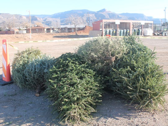 Christmas trees can be properly recycled during Keep Alamogordo Beautiful's annual Curb Your Tree event on Saturday, Jan. 9 or at the Willie Estrada Civic Center or Alamogordo Senior Center until Jan. 15.