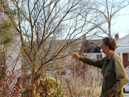 Horton examines vegetation outside of his Salisbury