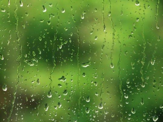 For Erin, Reno's rainy weather brought back memories of Louisiana, Oregon and Washington.