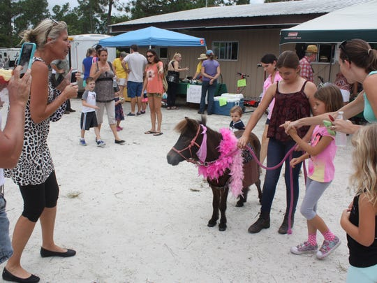 Visitors to the Country Festival in 2015 enjoyed meeting Roz, the mini-horse, and plenty of fun activities.