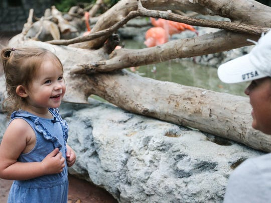 Willow smiles at her mother, Kendra Hickman, while looking at flamingos Monday, Aug. 28, 2017, at the Texas State Aquarium after Hurricane Harvey.
