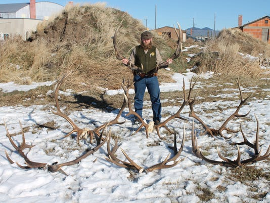 636465158714645273-Briggs-with-poached-elk-racks.jpg
