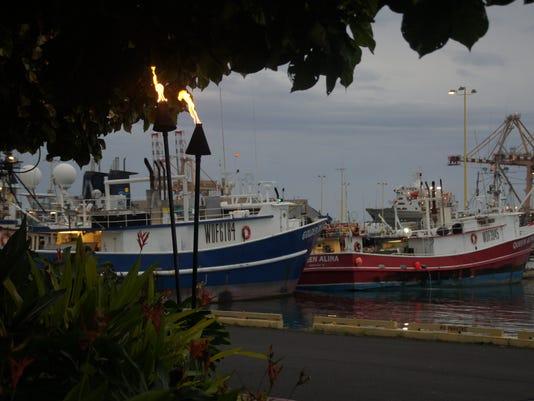 Honolulu Fish Auction-33.JPG