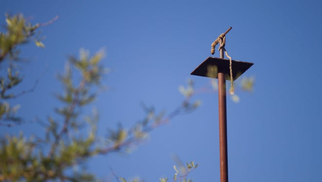 """Phoenix uses a """"raptor pole"""" to help control a ground squirrel infestation at 32nd Street and State Route 51. The pole attracts birds of prey who help control the squirrel population. The squirrels can cause damage to earthen levees and dams."""