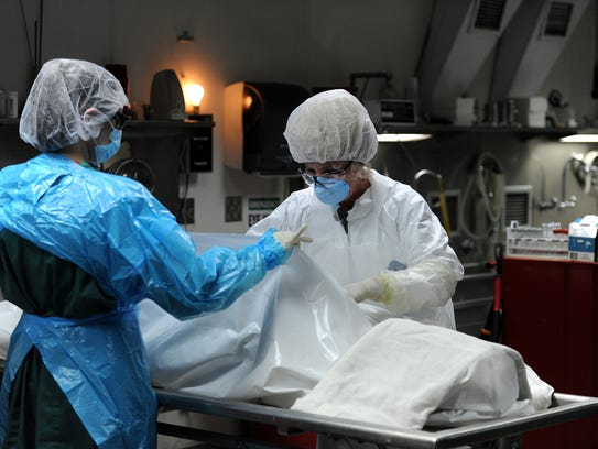 becoming a coroner Whether you want to become a coroner or you're looking to develop your career, read our coroner career guide to find the facts.