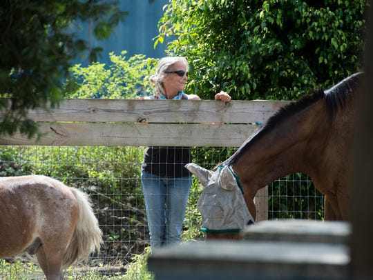 Barbara Schweigart, a volunteer at Equine Rescue and