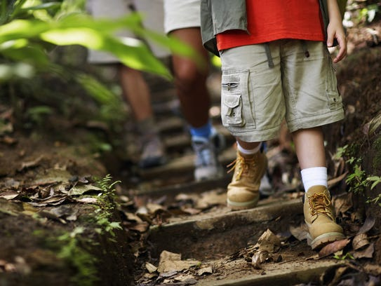 Head outdoors during the summer month for a walk in the woods.