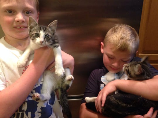 Cameron LaGrow, 9, left; and Connor LaGrow, 7, hold kittens Sailor and Skipper, who were rescued after jumping into the Willamette River.
