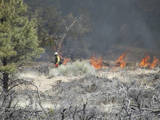 A prescribed fire burns on Slaughter Mesa in the Gila National Forest.