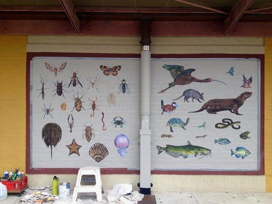 Chris Pavlik has been five new murals on Congress Street