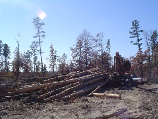 Salvage loggers collected more than 50 million board-feet of downed timber from the Mark Twain National Forest after the May 2009 storm.