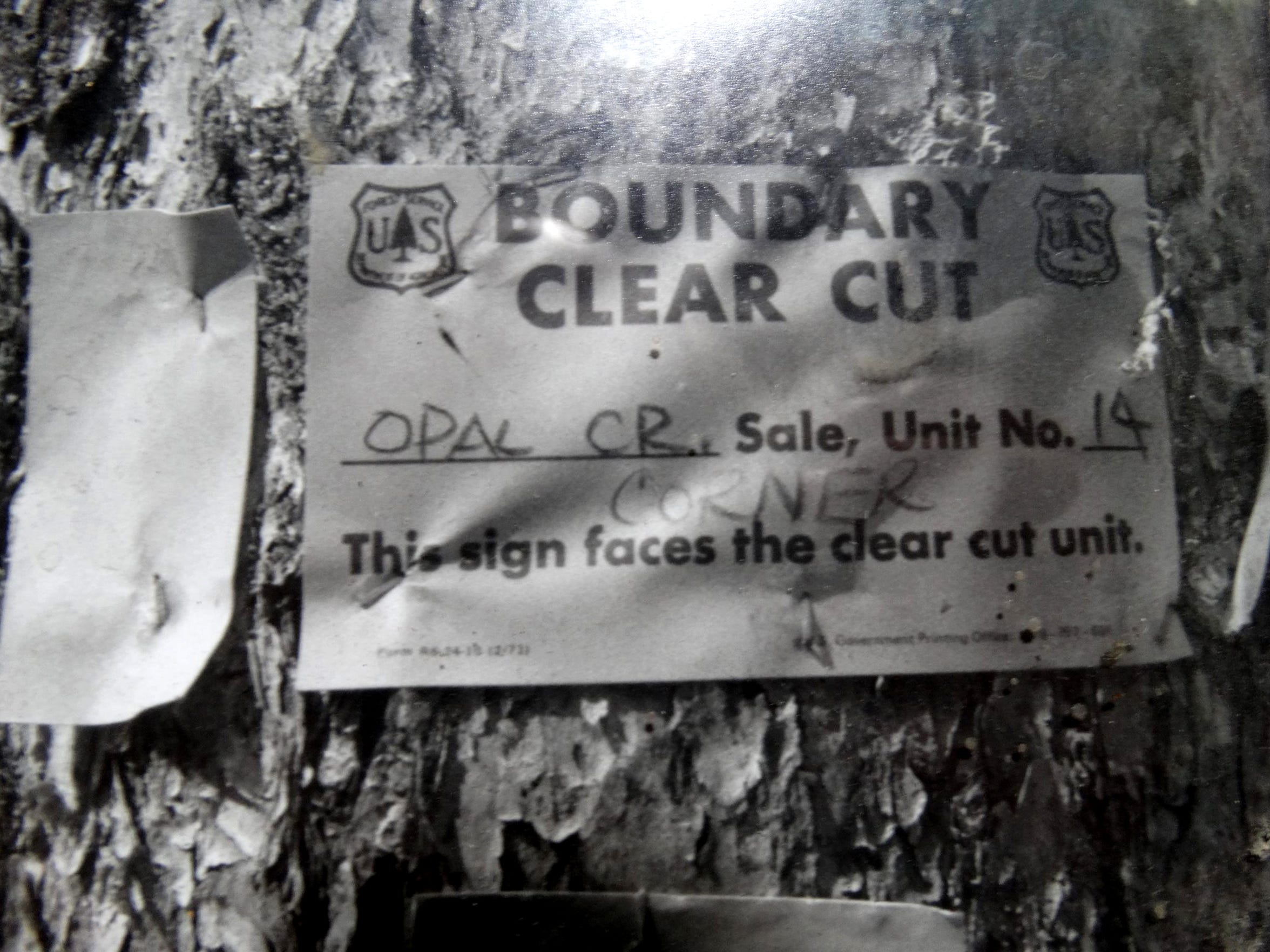 This boundary marker was placed in 1981, when the U.S. Forest Service planned to offer the Opal Creek Timber Sale.