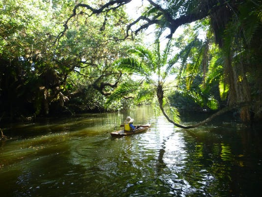 estero river kayak