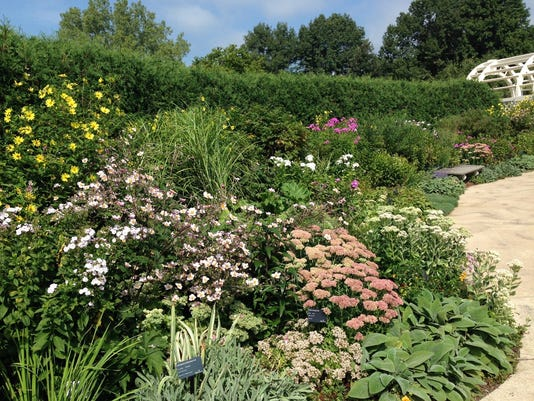 Choosing Perennials For Your Landscape