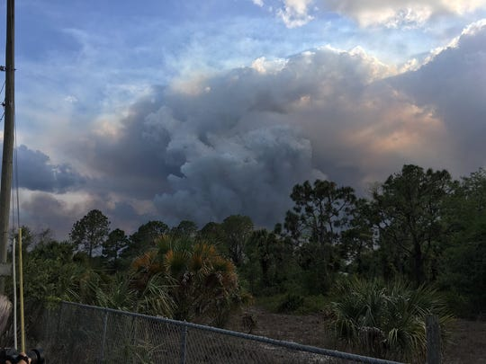 Lots of smoke is seen near Frangipani Avenue in Golden Gate Estates. Fire trucks and CCSO deputy just passed heading closer to the large 175-acre fire.